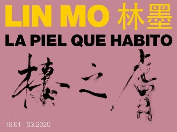 La Piel Que Habito by Lin Mo